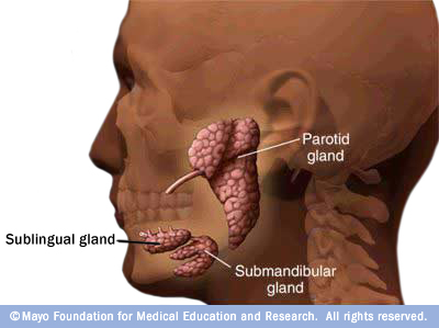 Feasible, safe to limit radiation to major salivary glands ...